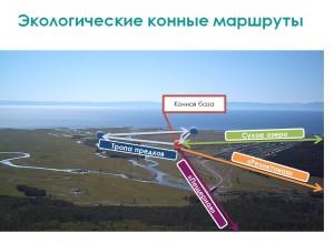 Экологические конные маршруты